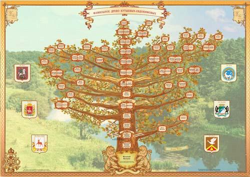 снижаются потери родовое дерево баланова никифора федоровича Merino двухслойное термобелье